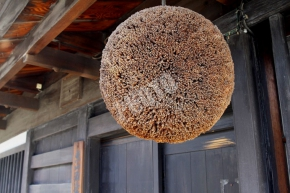 杉玉 Sugidama(ball made from Japanese cedar)